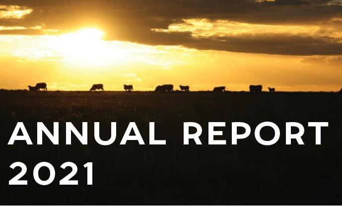 Annual Report Image 21