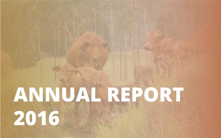 Annual report_2016
