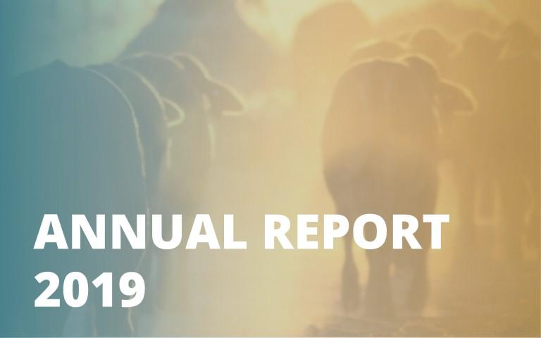 Annual report_2019