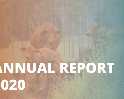 Annual report_2020