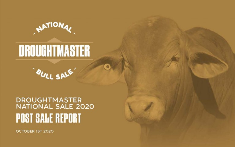 Droughtmaster National Bull Report Front Cover_Page_01