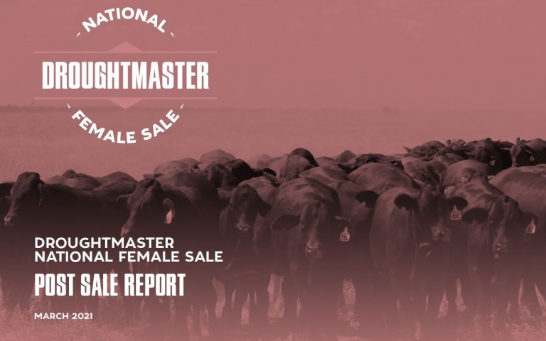 Female Sale Post Report Front Page Image 21