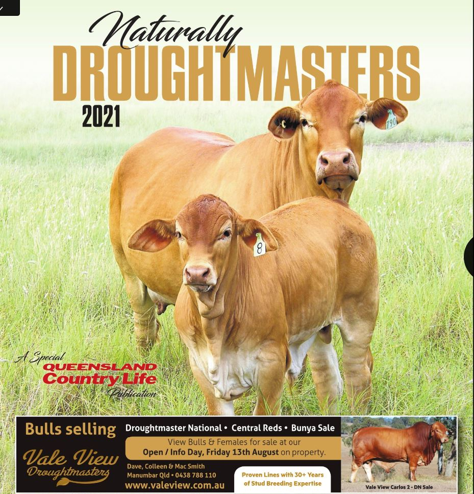 Naturally Droughtmaster 2021