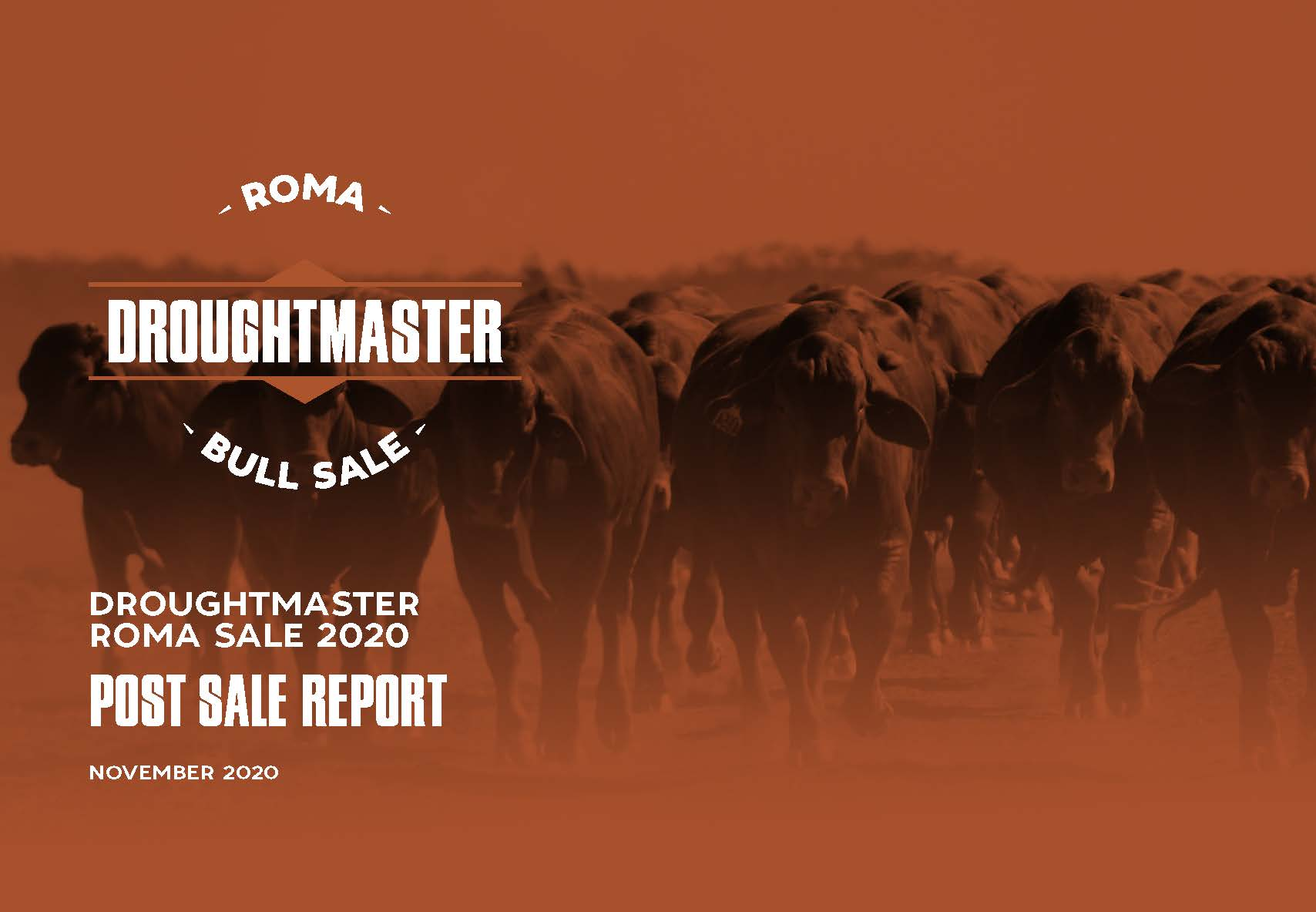 Roma Bull Sale Front cover